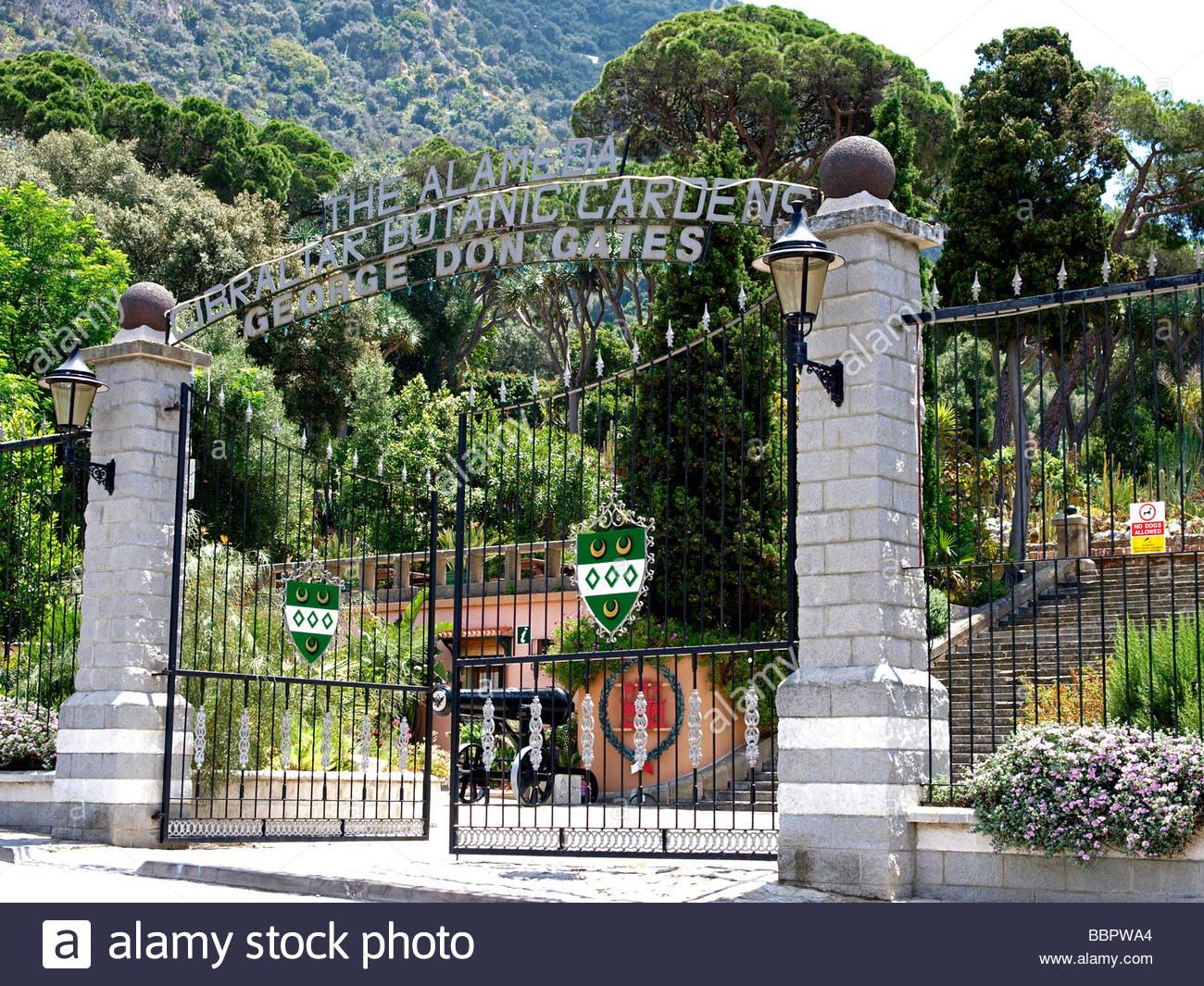 Superbe The Alameda Trafalgar Botanic Gardens George Don Gates Gibraltar