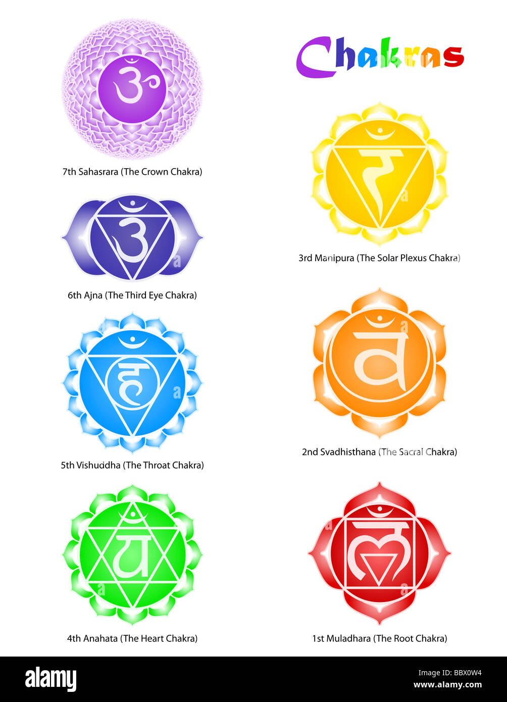 seven chakra symbols stock photo royalty free image