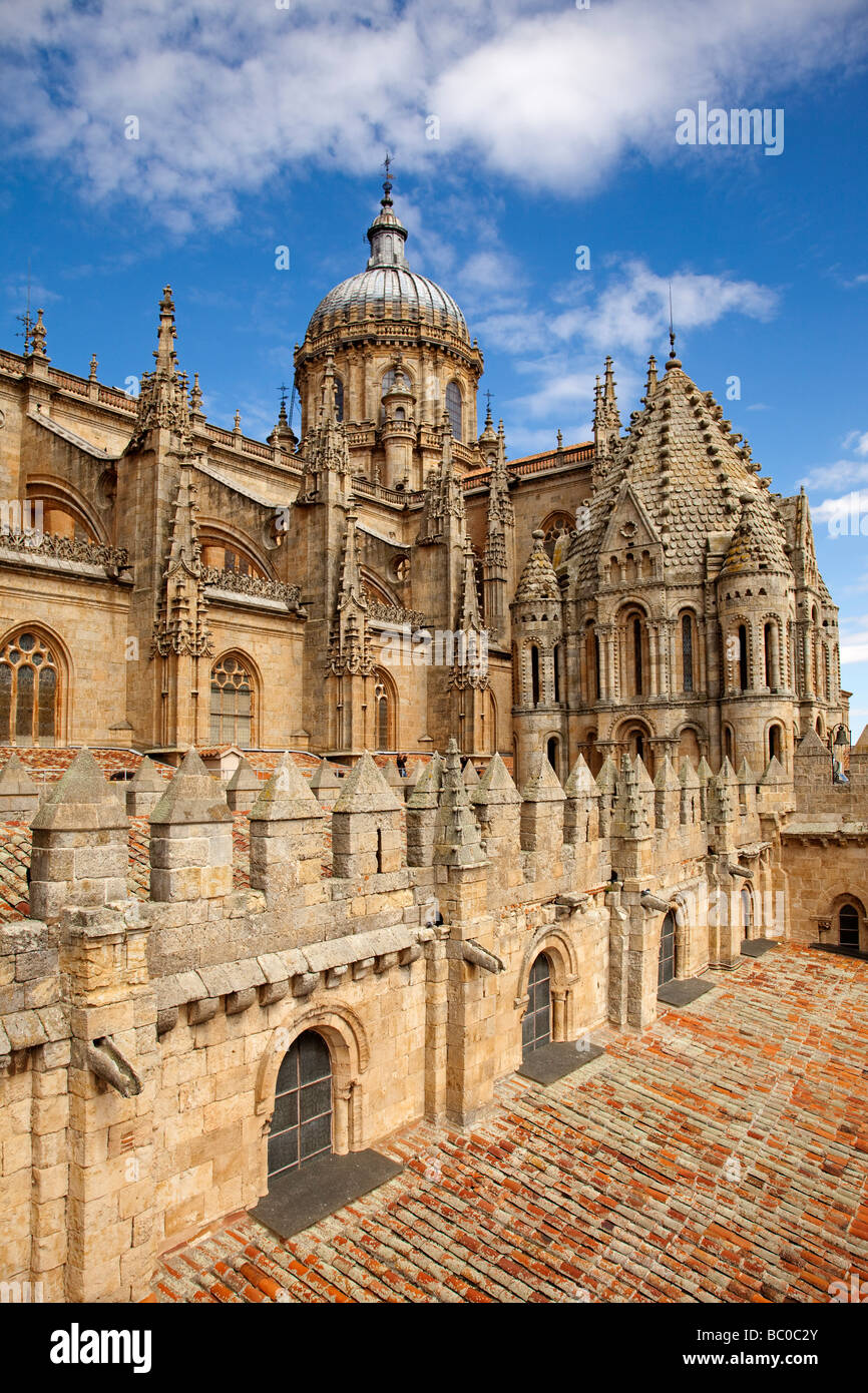 Catedral Vieja de Salamanca Castilla León España Old Cathedral of Stock Photo...
