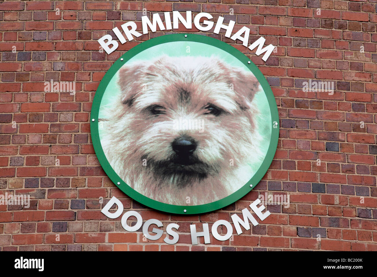 Birmingham Dogs Home Digbeth