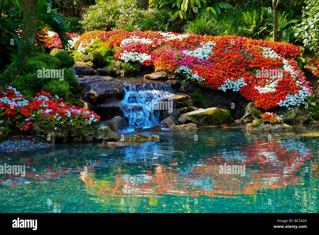 A beautiful flower garden with a waterfall in Tropical Souther Florida,  USA, America