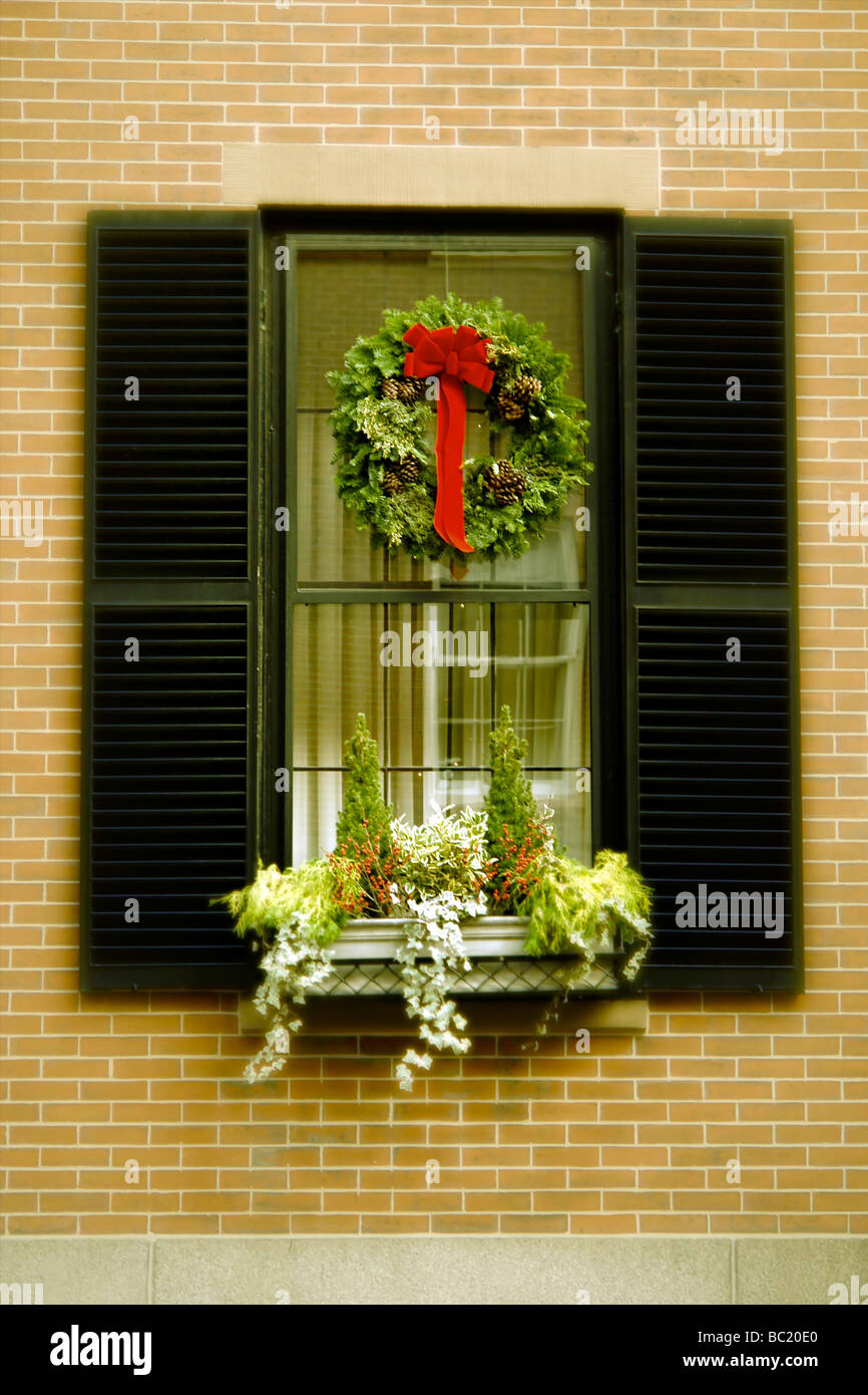 a boston christmas window with wreath shutters and plants in ...