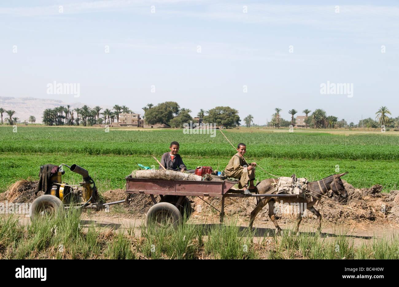 Nile River Farming