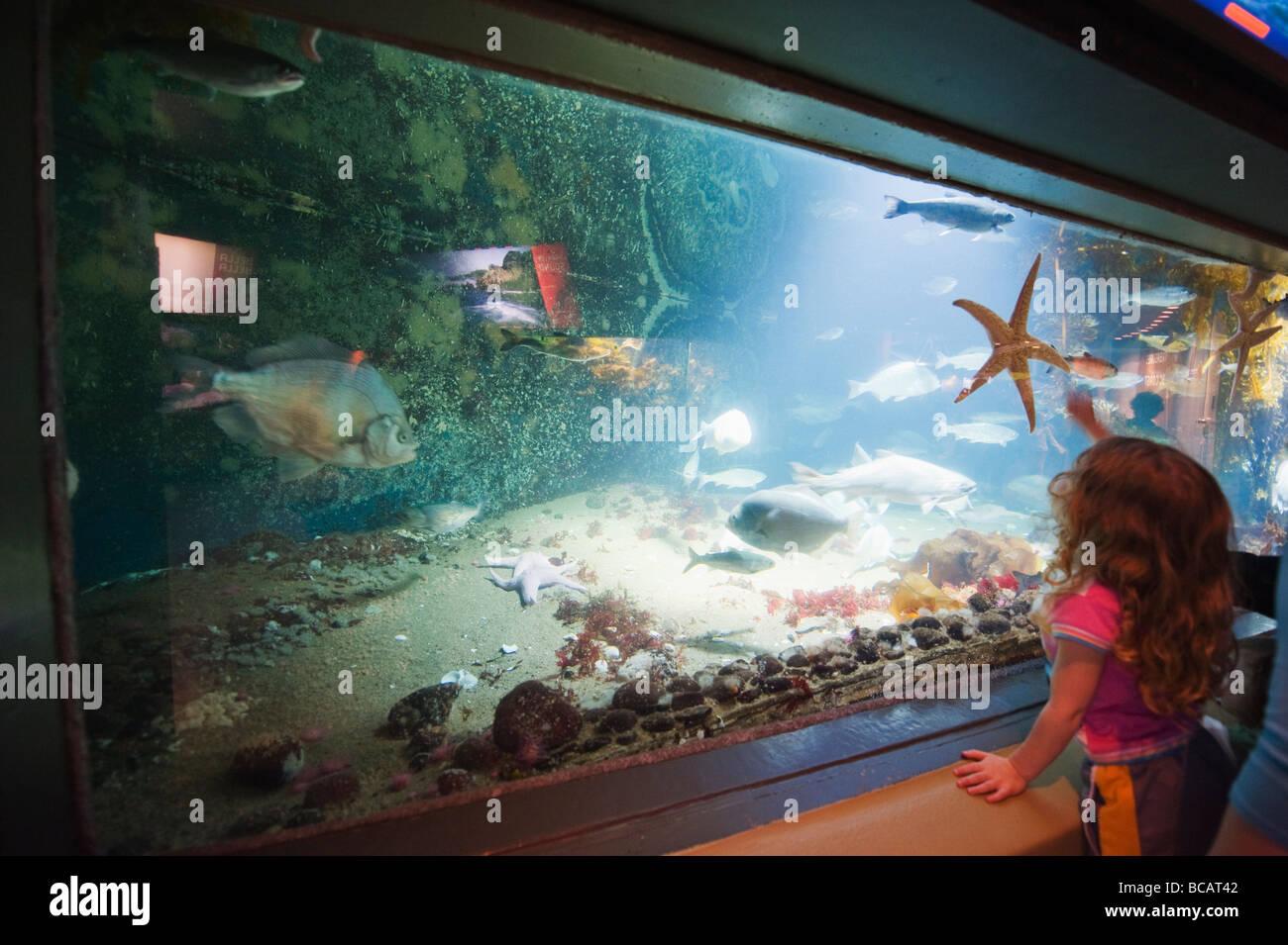 Freshwater aquarium fish vancouver - Stock Photo Vancouver Aquarium Marine Science Centre In Stanley Park Vancouver British Columbia Canada