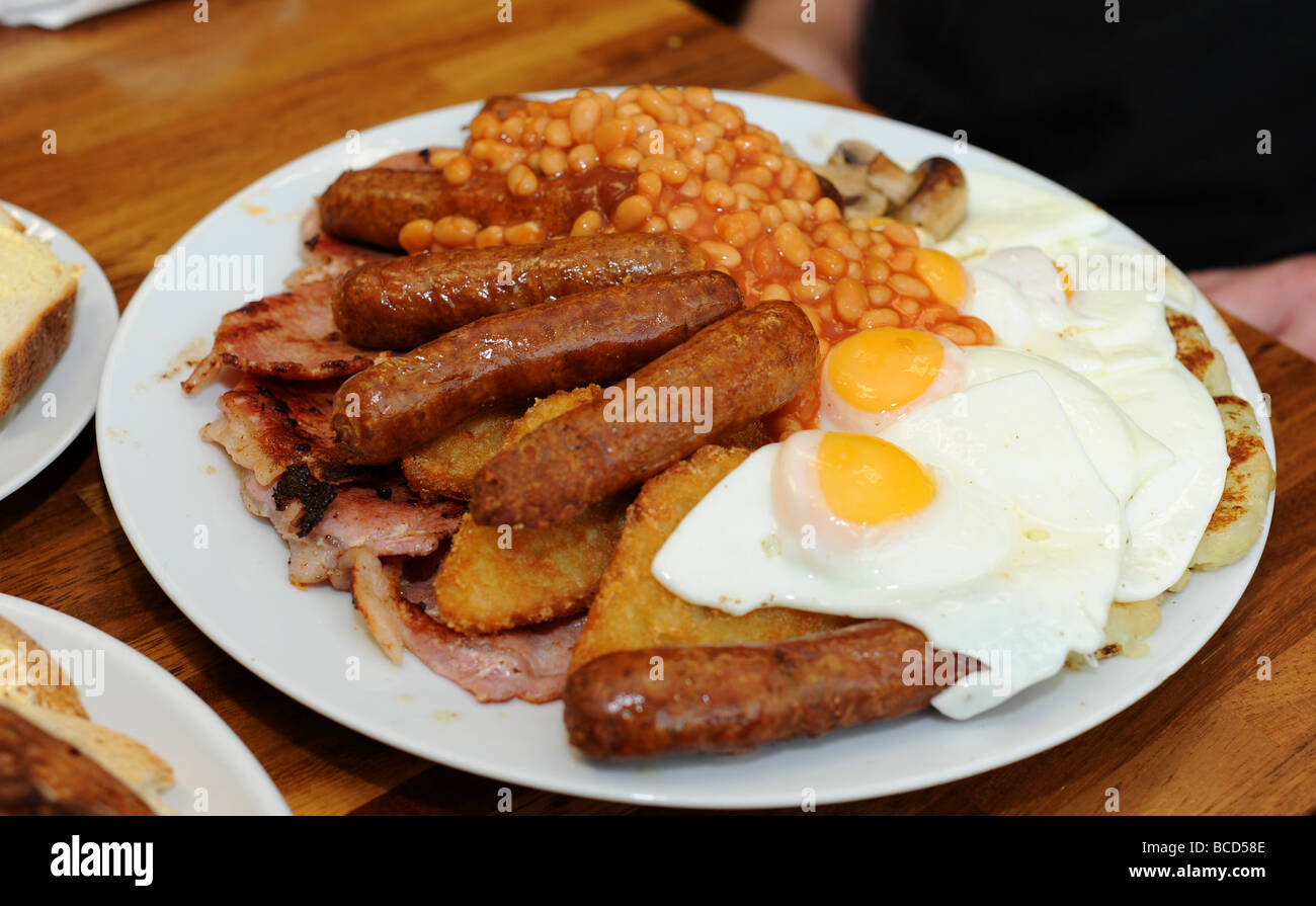 bekfast full