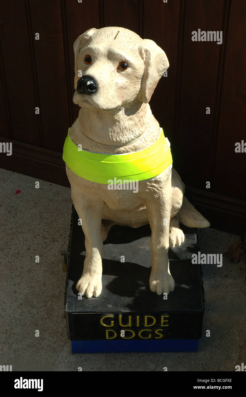 Charity Collection Box For Guide Dogs For The Blind