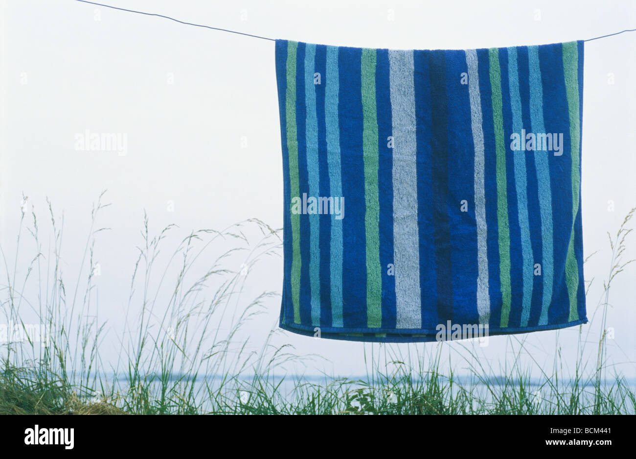 hanging beach towel. Striped Beach Towel Hanging On Clothes-line, Tall Grass In Background 0