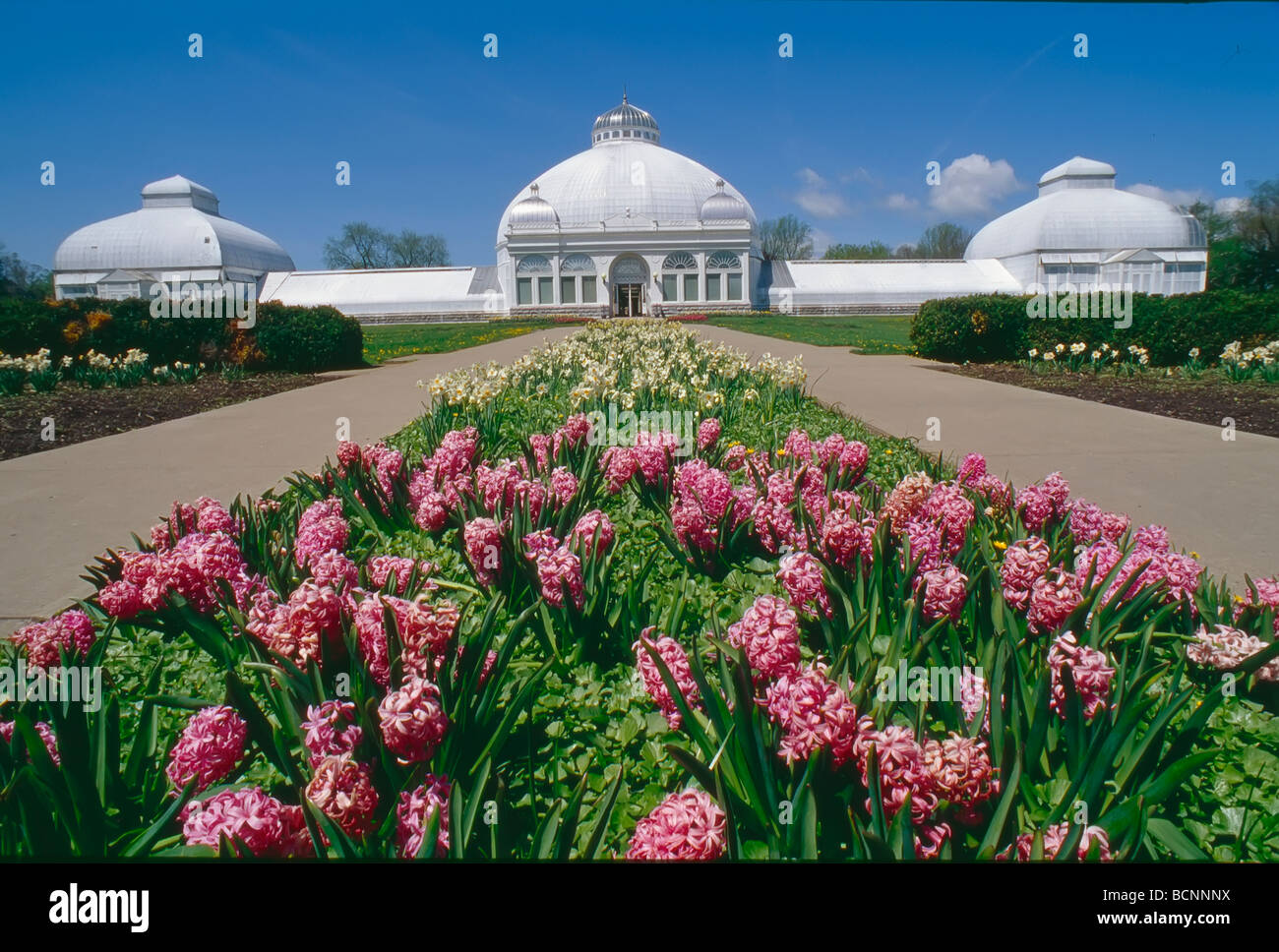 Buffalo And Erie County Botanical Gardens In Lackawanna New York