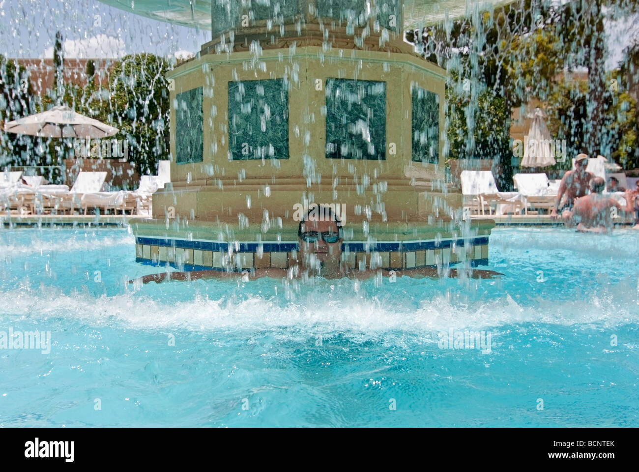 Man In Luxurious Swimming Pool Of The Bellagio Resort And Casino In Stock Photo Royalty Free
