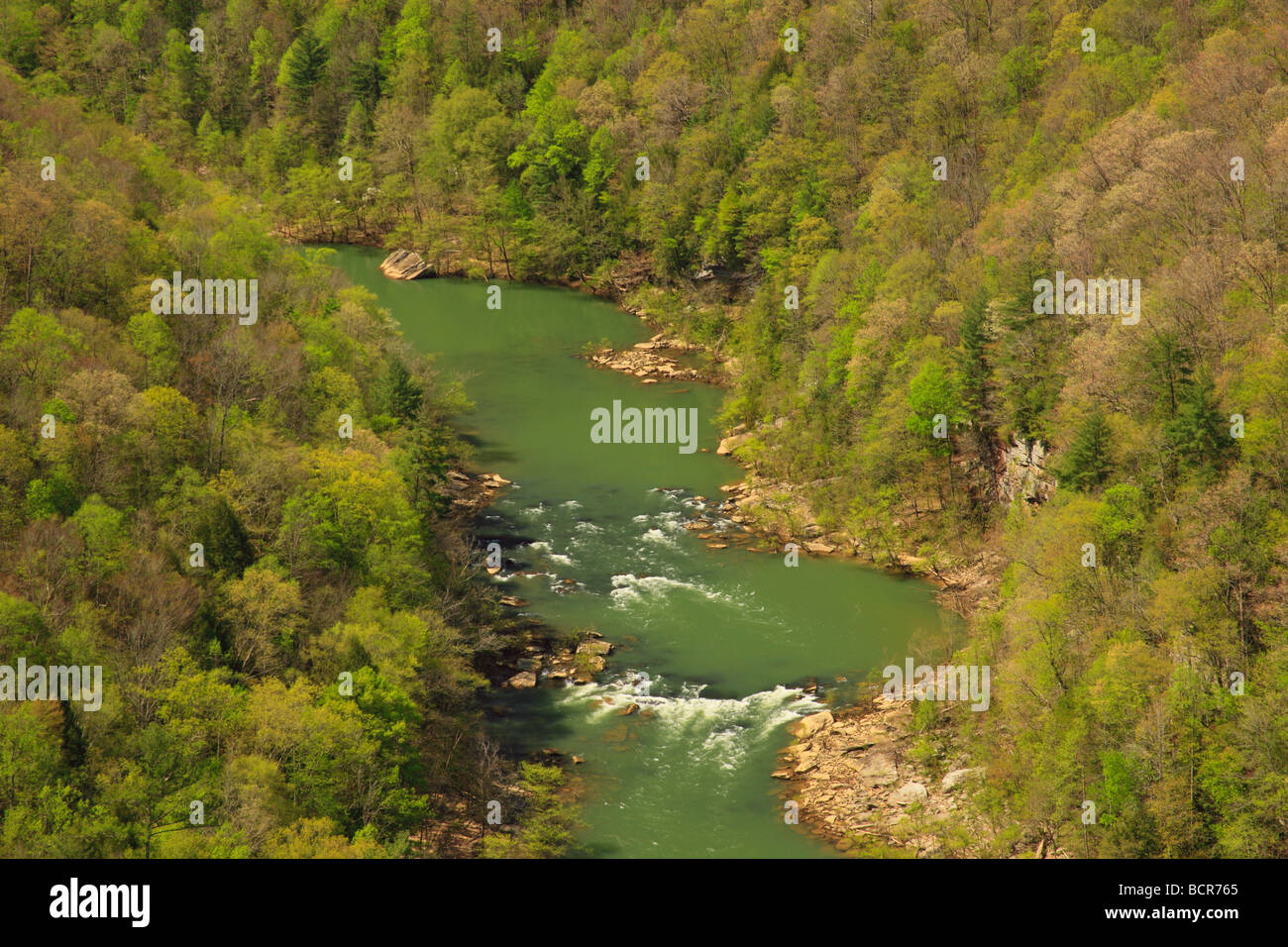View From East Rim Overlook Big South Fork National River