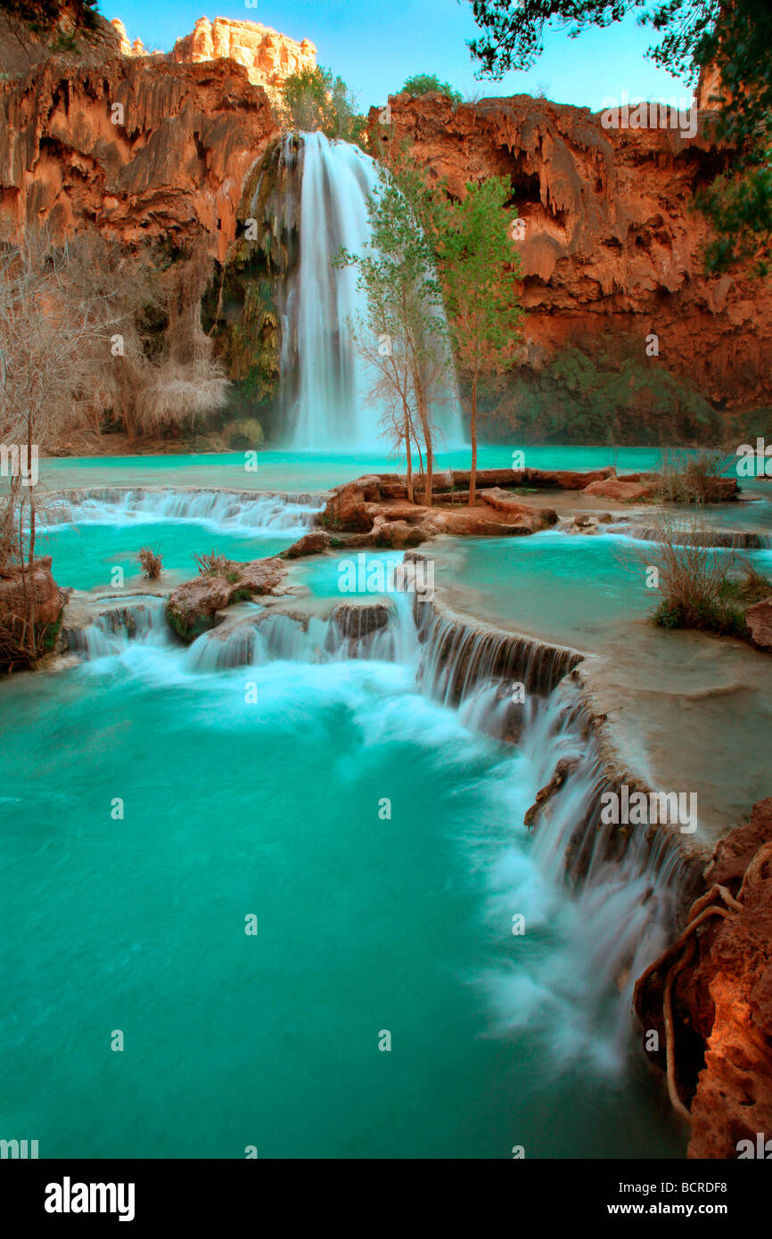 Waterfall in a forest, Havasu Falls, Havasupai Indian ...