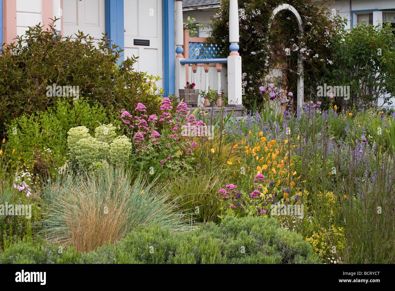 Beautiful Amy Stewart S No Lawn Flowering Perennial Garden Front Yard