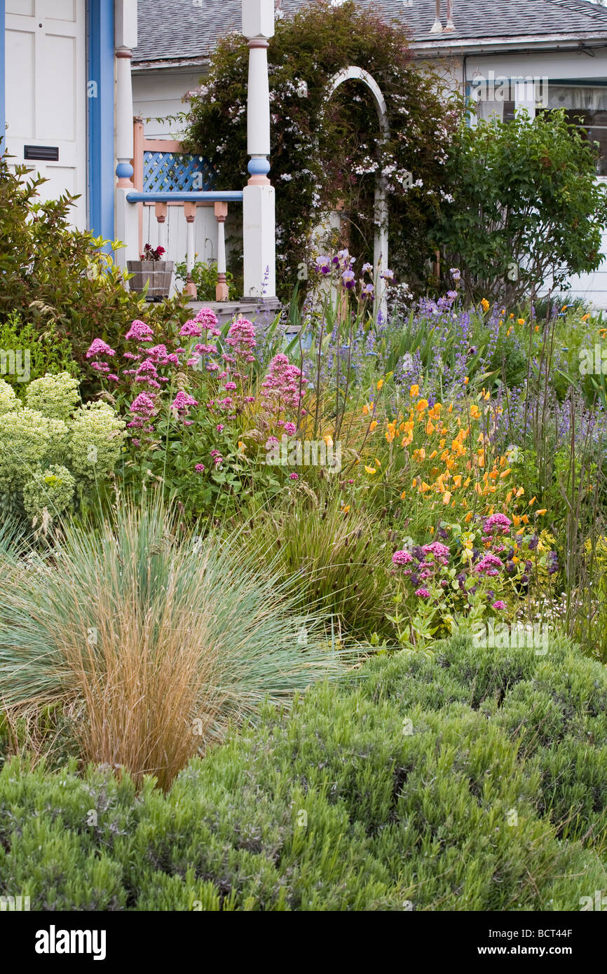 Amy Stewart S No Lawn Flowering Perennial Garden Front Yard With Ornamental  Grasses