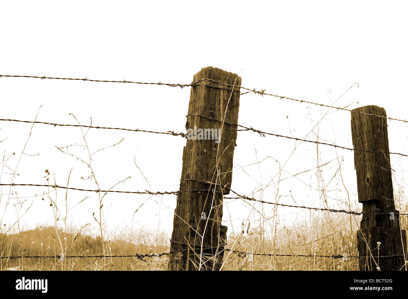 Barbed Wire Fence Front View - Dolgular.com