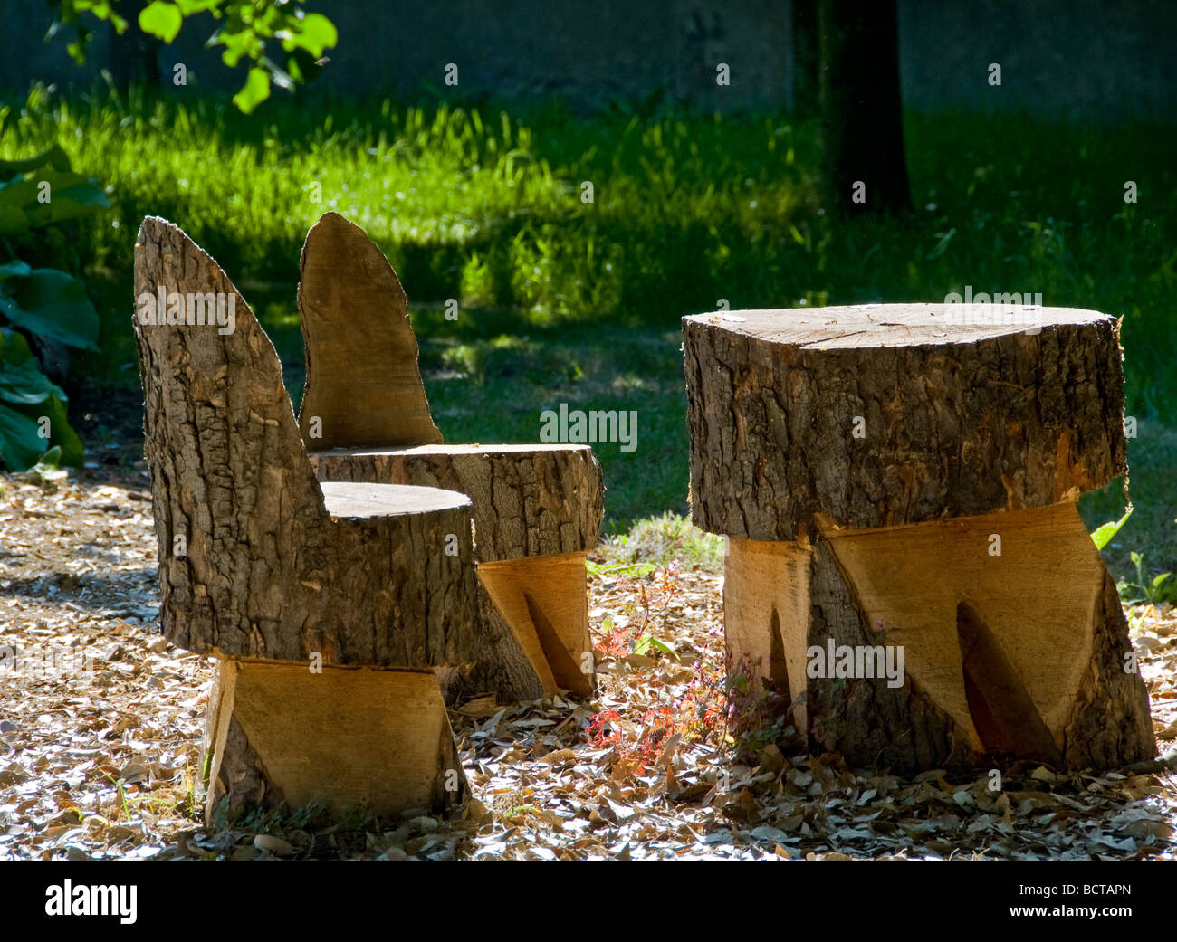 Rustic garden table and chairs carved from an old tree - Tree trunk table and chairs ...