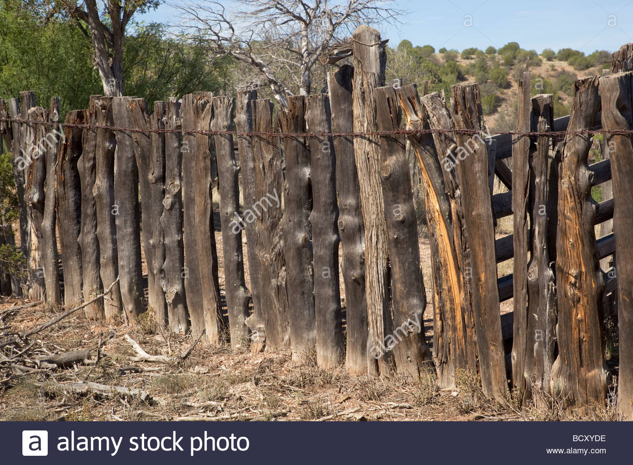 Old wood fence posts stock photos old wood fence posts stock old wooden weathered corral fence posts new mexico stock image baanklon Image collections