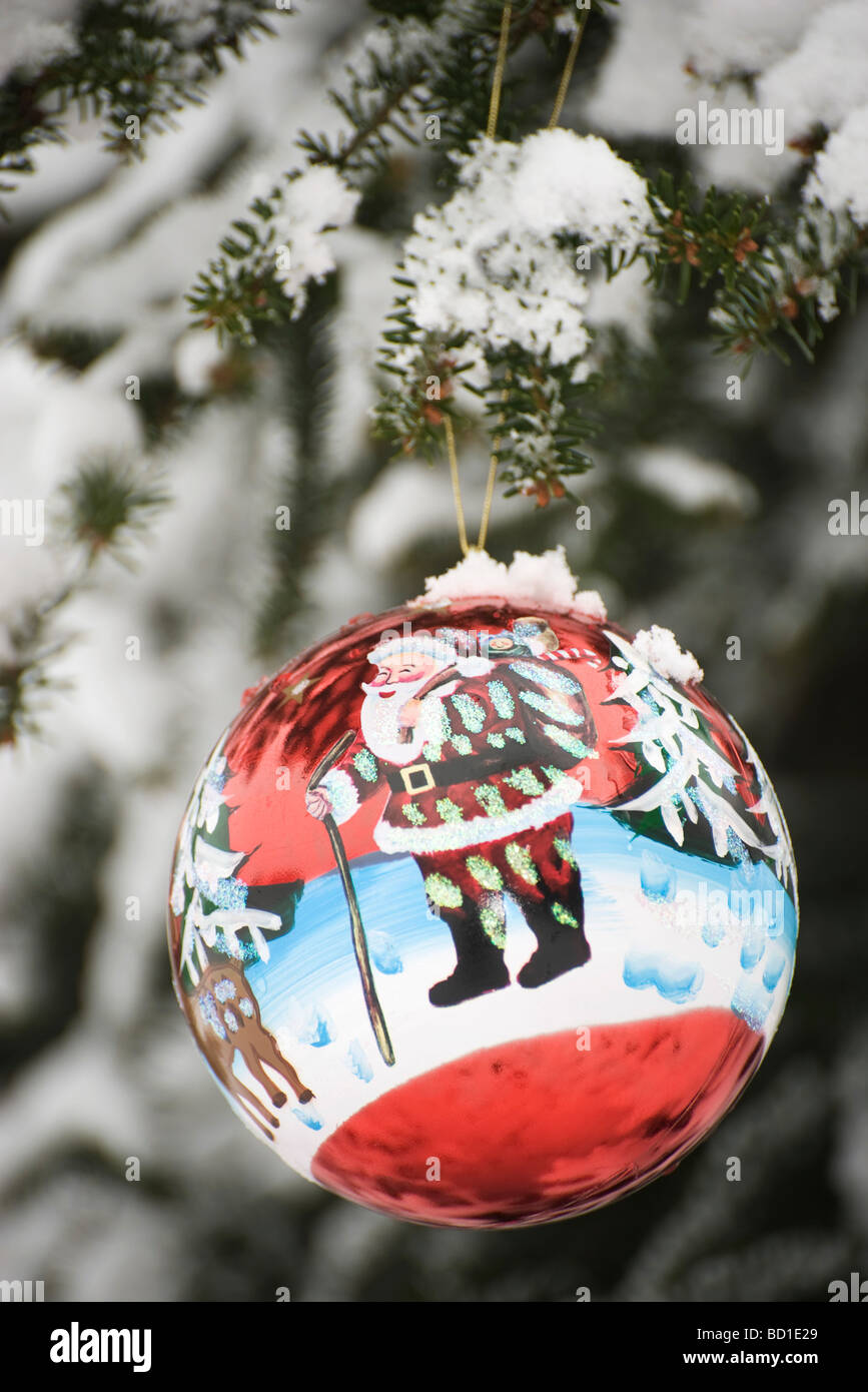 Frosted christmas ornaments - Colorful Christmas Ornament Hanging From Snow Frosted Branch