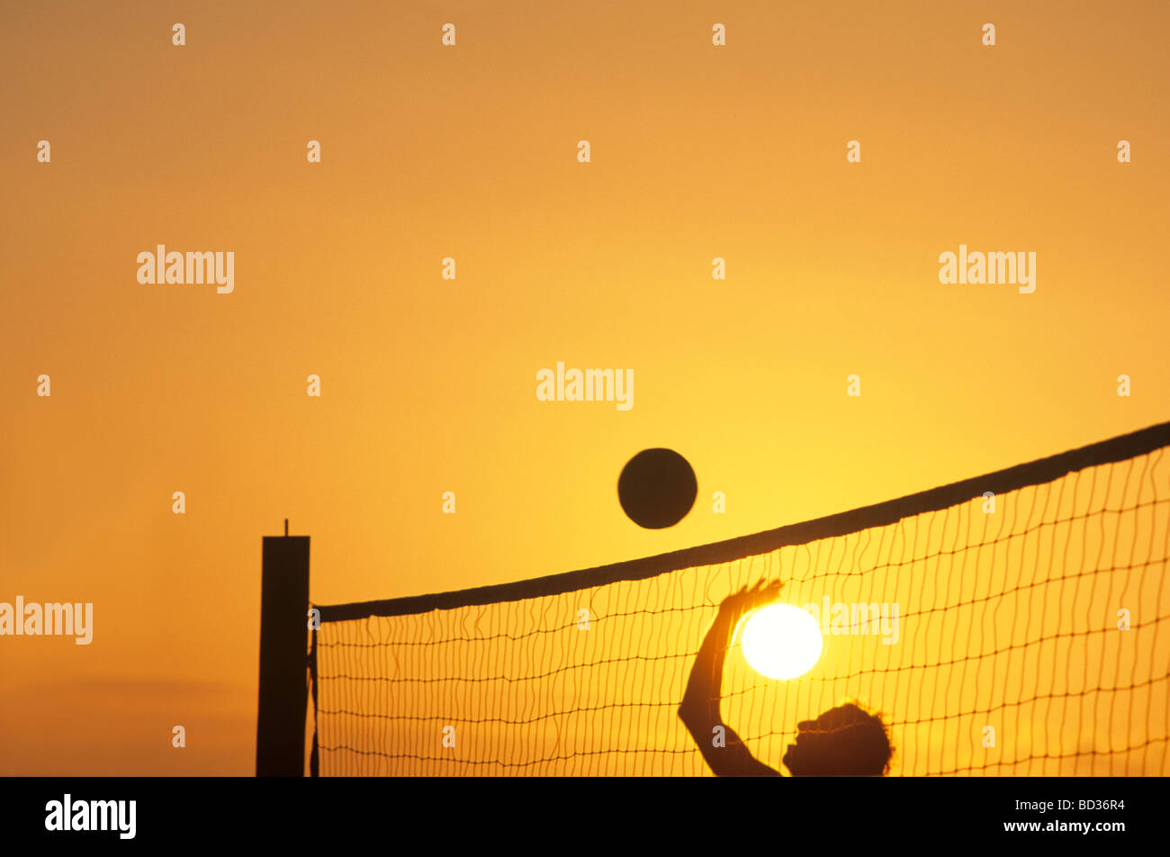 Royalty Free Nude Volleyball Players Pictures, Images and