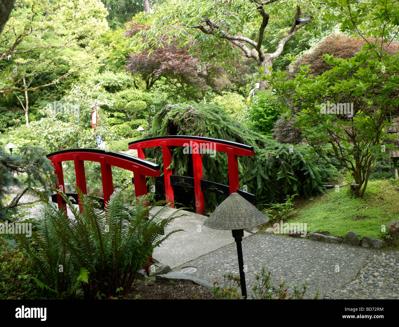 japanese garden in butchart gardens stock photos u0026 japanese garden