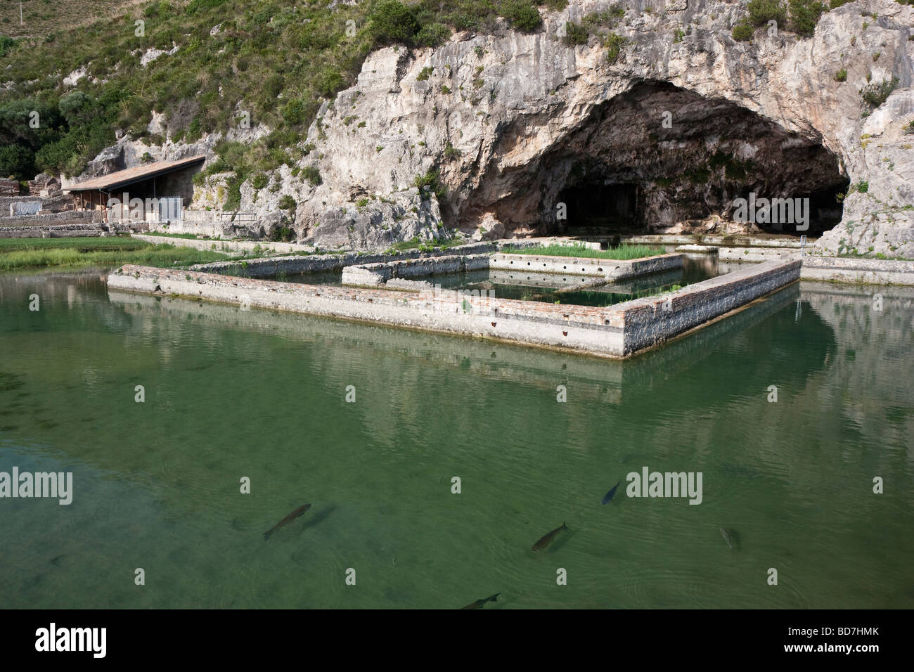 The exterior and outermost fish ponds of the grotto of for Stocked fishing ponds