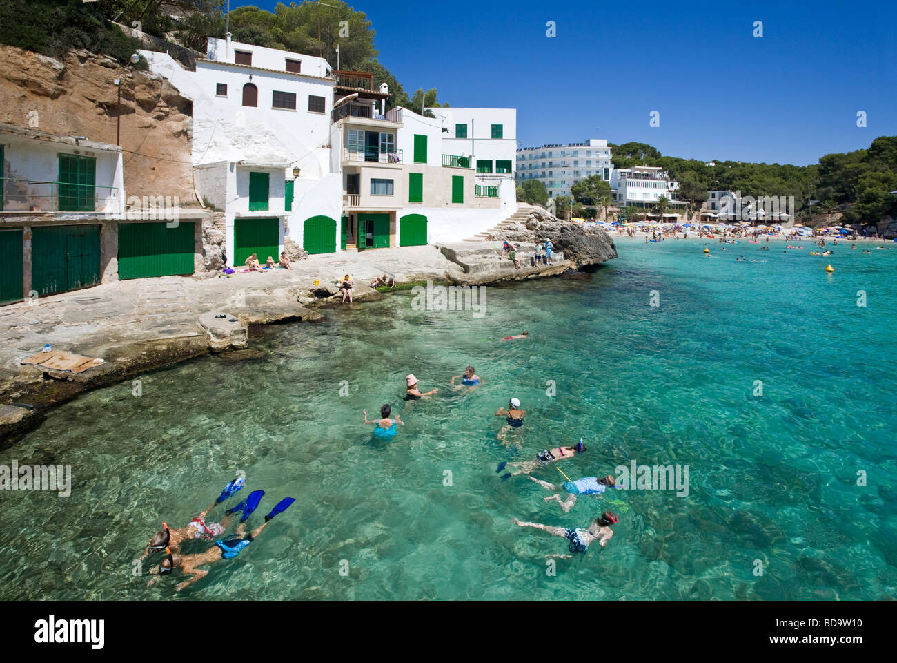 people snorkeling cala santanyi mallorca island spain stock photo 25418092 alamy. Black Bedroom Furniture Sets. Home Design Ideas