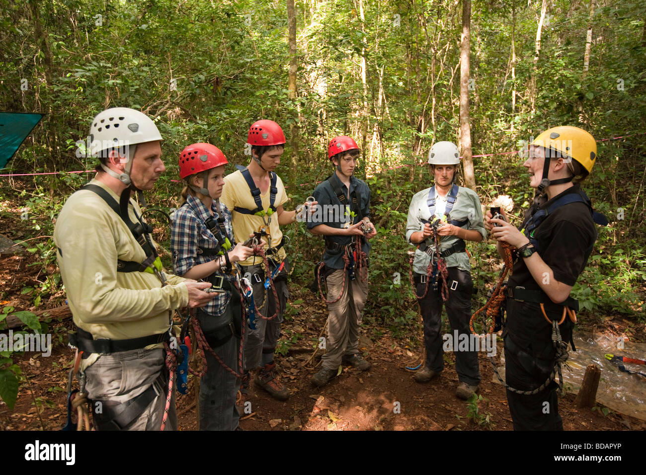 Indonesia Sulawesi Operation Wallacea Lambusango forest reserve teaching canopy access group & Indonesia Sulawesi Operation Wallacea Lambusango forest reserve ...