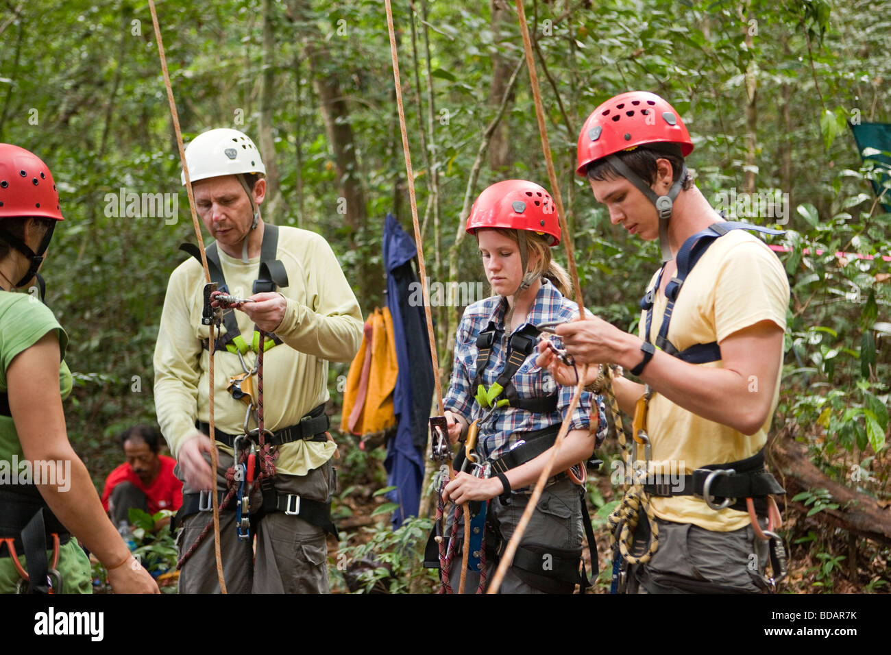 Indonesia Sulawesi Operation Wallacea Lambusango forest reserve canopy access student instruction  sc 1 st  Alamy & Indonesia Sulawesi Operation Wallacea Lambusango forest reserve ...