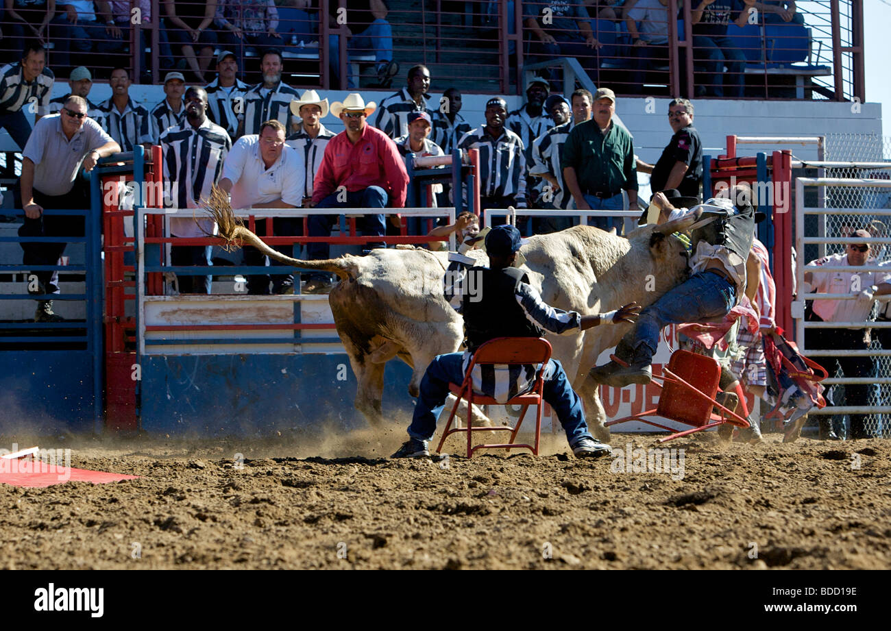 Louisiana State Penitentiary Angola Prison Rodeo Photo