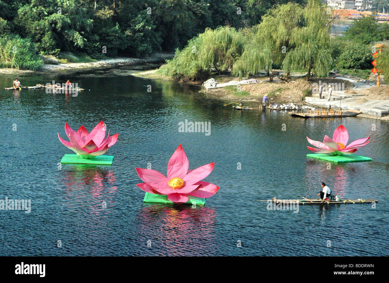 Lotus flower china stock photos lotus flower china stock images china guilin yangshuo li river large lotus flower decorations on the river stock image dhlflorist Choice Image