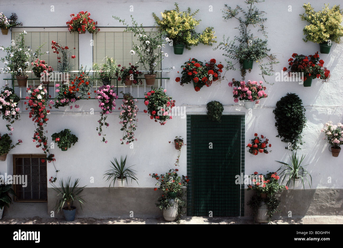 How to decorate home with flowers - Flowers Decorate House In Juviles Village High Alpujarras Granada Andalucia Spain