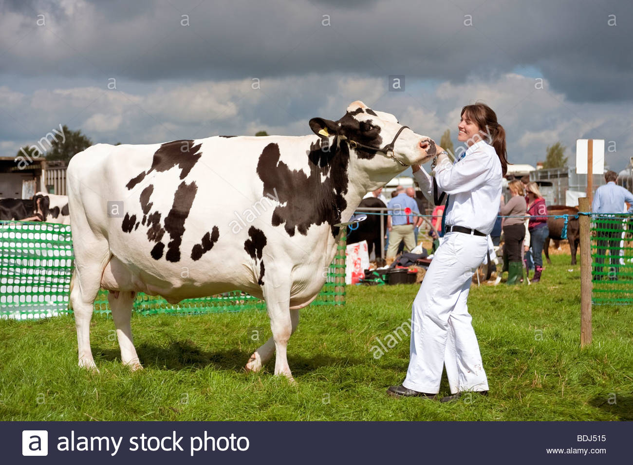 dairy women We're proud to be supporting women in sport dairy farmers of canada is fuelling women champions may 20, 2015 we're proud to be supporting women in sport.