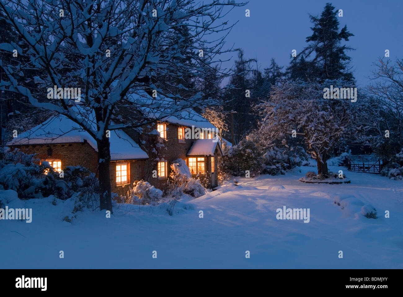 Christmas card scene of cosy country cottage at twilight in virgin ...