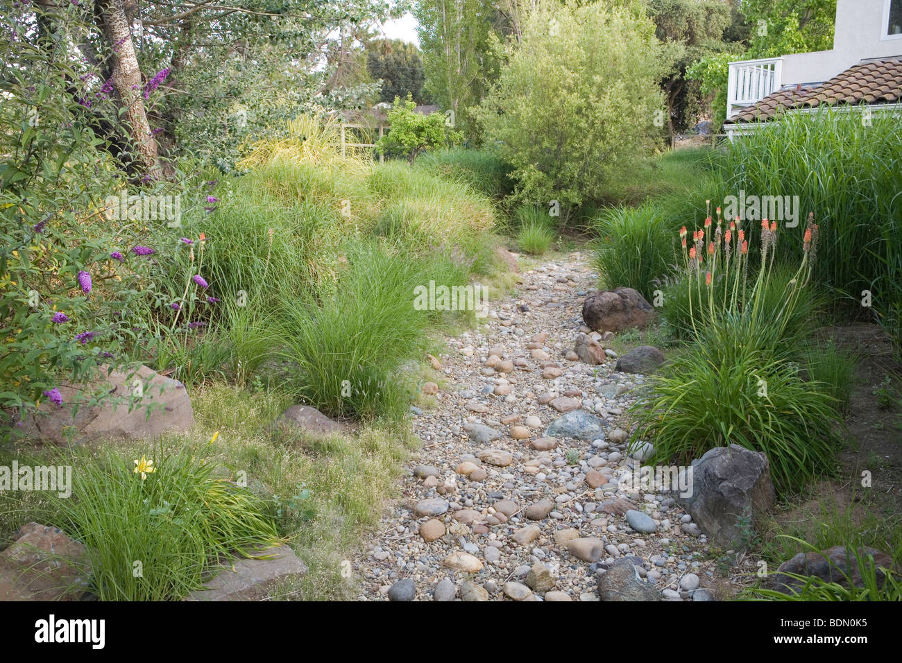 Dry Gravel Stream Swale In California Meadow Garden, Design Richard  McPherson
