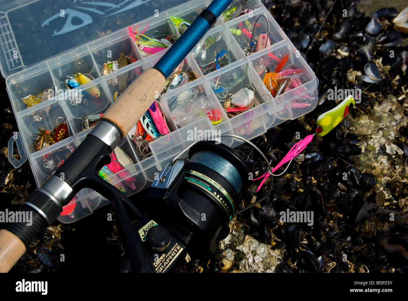 Fishing gear and tackle for Fish and tackle