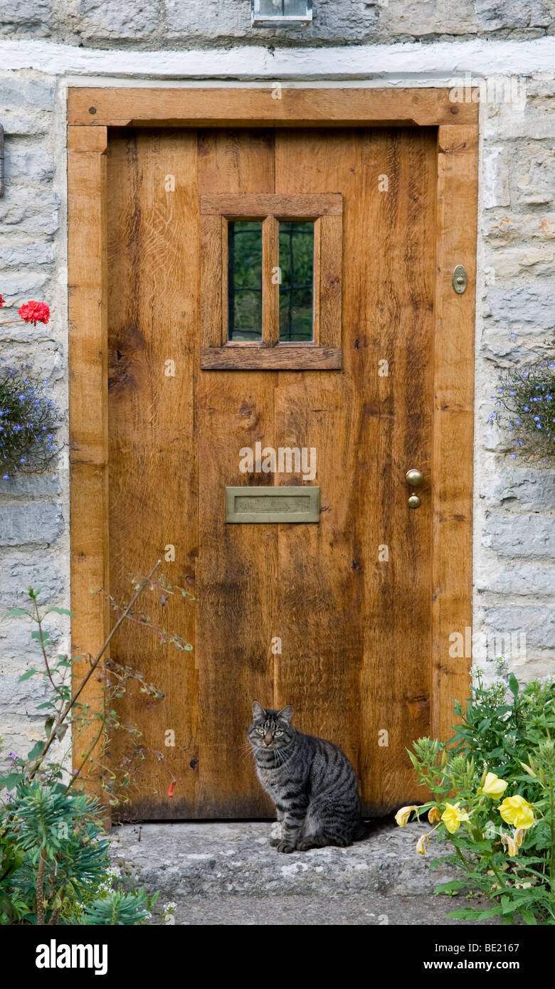 cottage front doorsDomestic cat sitting by the front door of a country cottage Stock