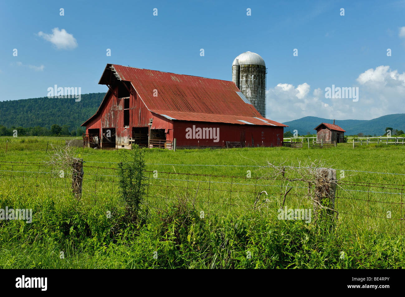 Cow on green pasture with red barn with grain silo royalty free stock - Red Barn And Fence In Grassy Cove In Cumberland County Tennessee Stock Image