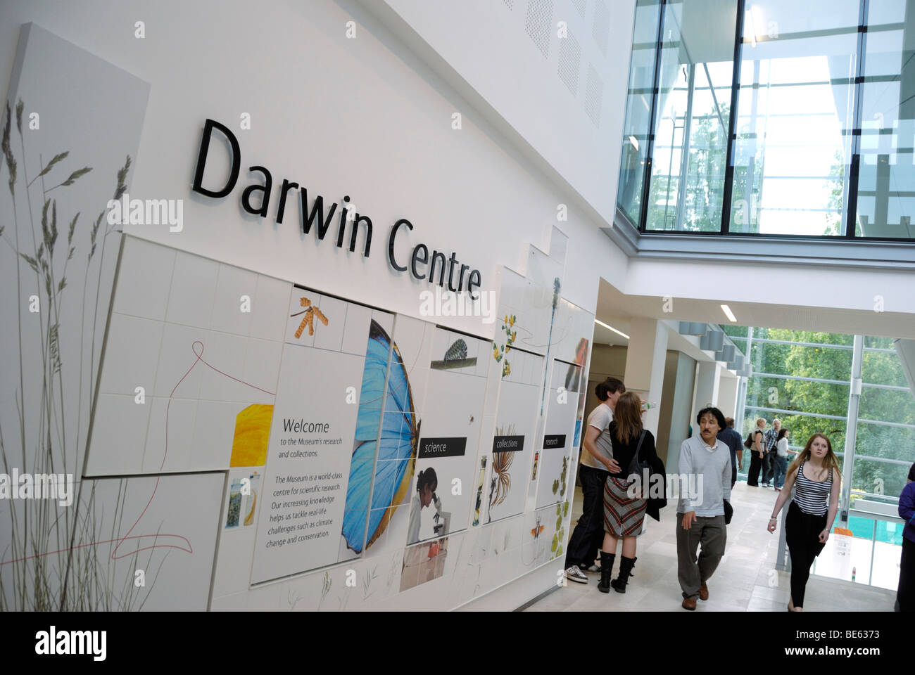 Foyer Museum Uk : Darwin centre foyer at the london natural history museum