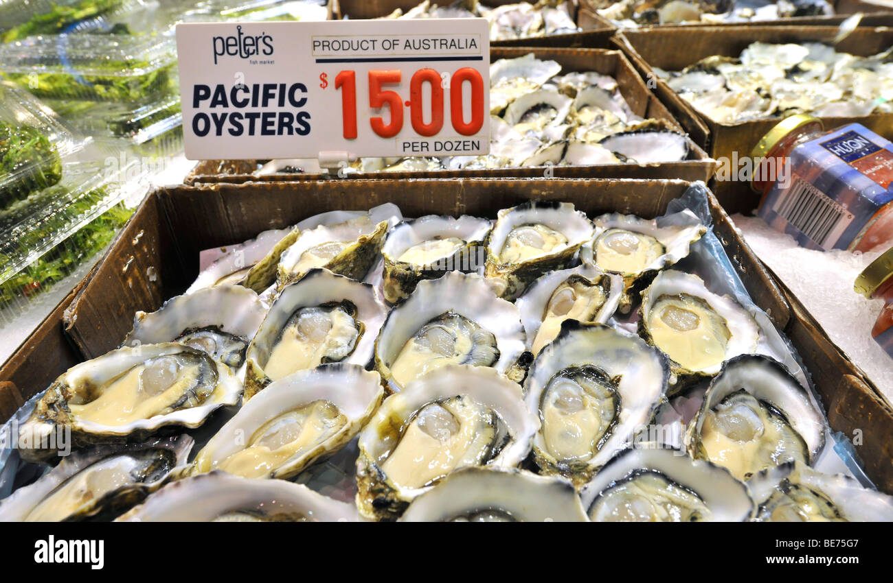 Pacific oysters sydney fish market sydney new south for Pacific fish market