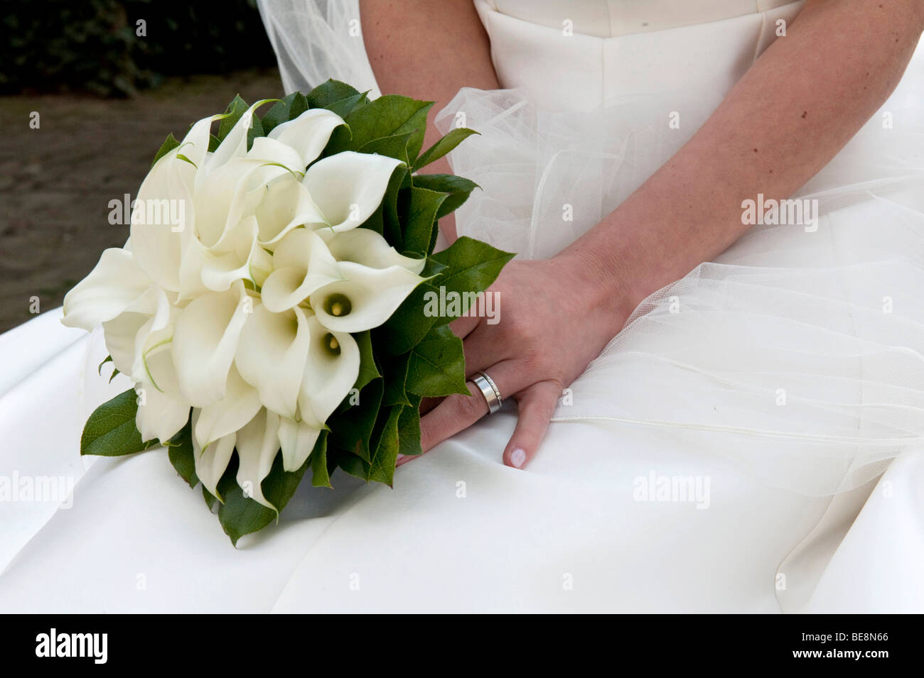 Wedding bouquet of white Callas in the lap of the bride Stock Photo ...