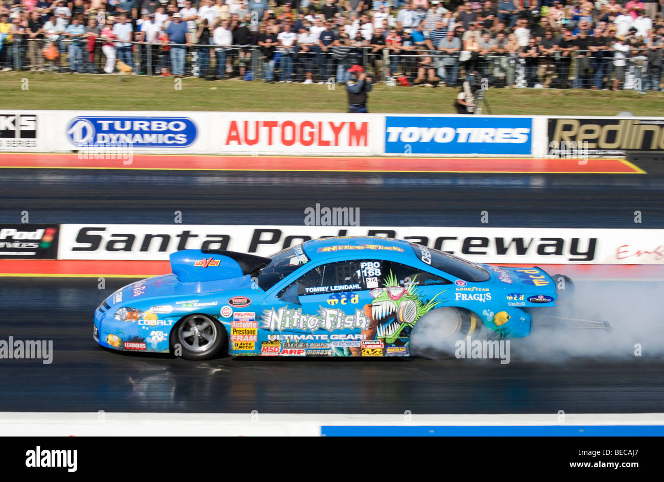 fia pro stock dragster driven by tommy leindahl at the fia european stock photo  royalty free