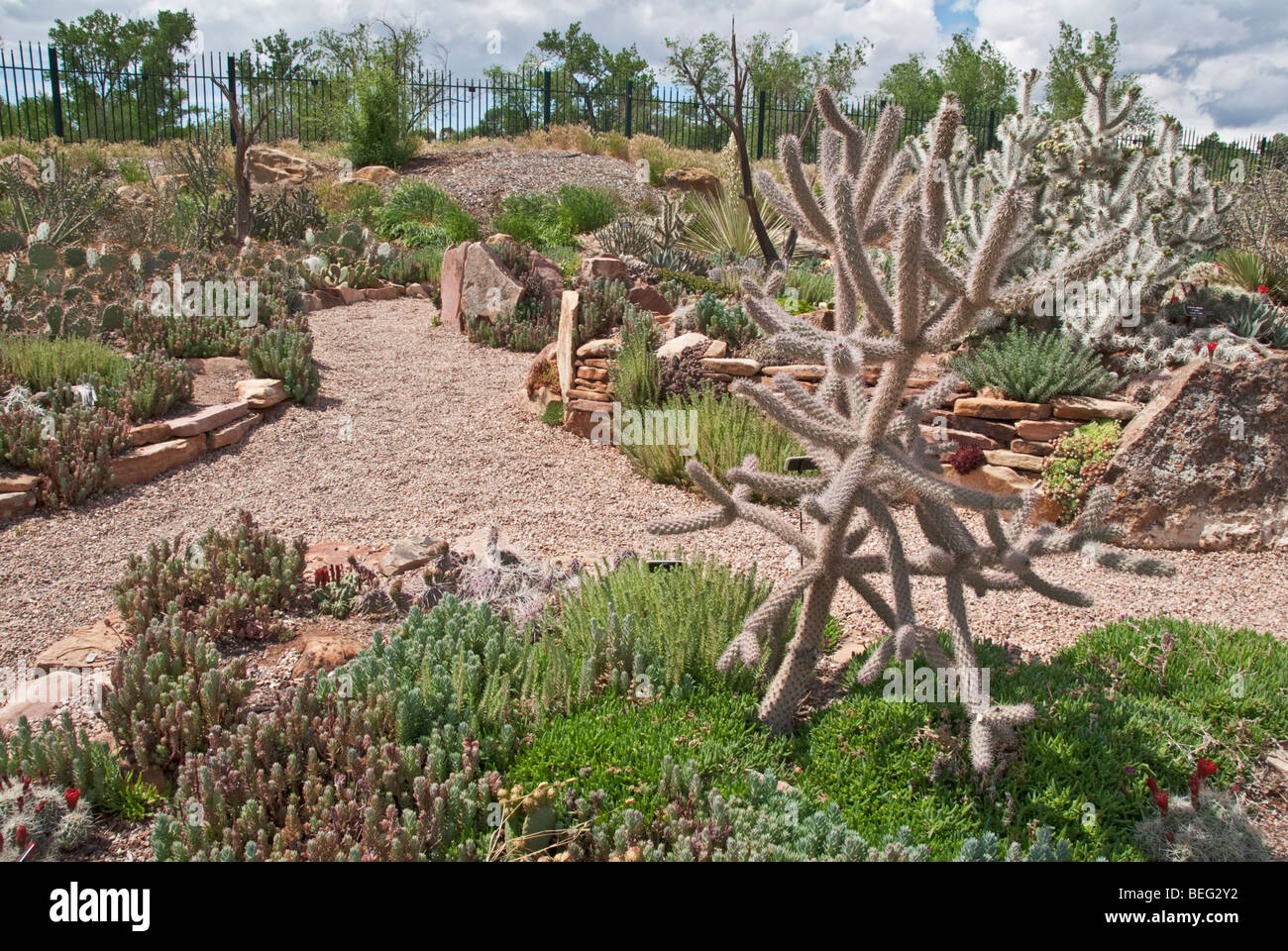 Colorado Grand Junction Western Colorado Botanical Gardens Stock Photo Royalty Free Image