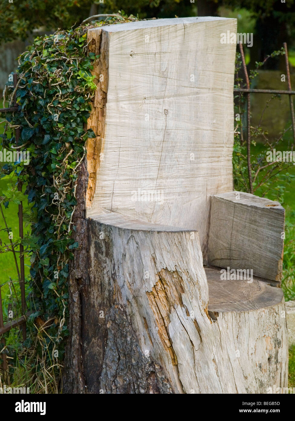 Tree Stump Seats Tree Stump Cut Out Stock Photos Tree Stump Cut Out Stock Images