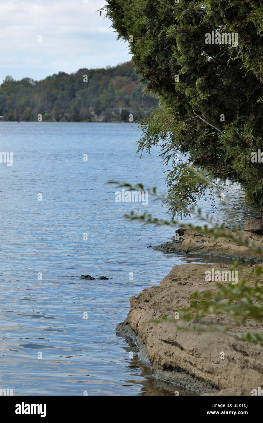 Old hickory lake near nashville tennessee usa stock for Old hickory lake fishing