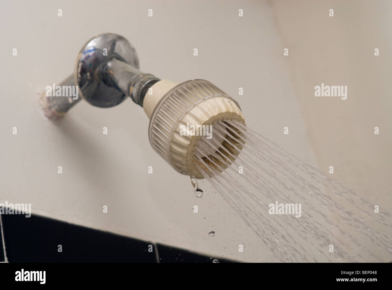 A plastic shower head Stock Photo, Royalty Free Image: 26298616 ...