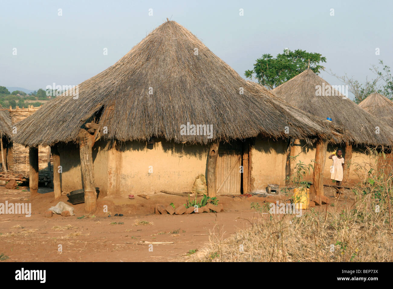 Primitive Huts With Thatched Roofs In Village In Zambia