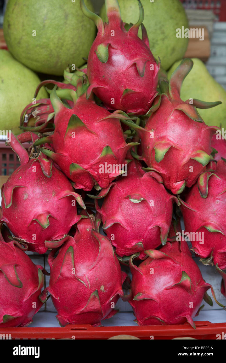 dragon fruit other names