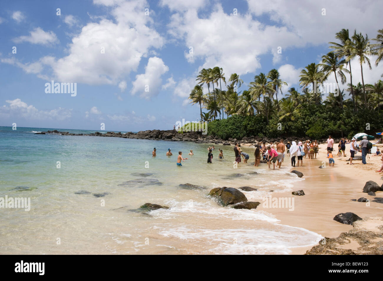 Laniakea Beach Stock Photos & Laniakea Beach Stock Images - Alamy