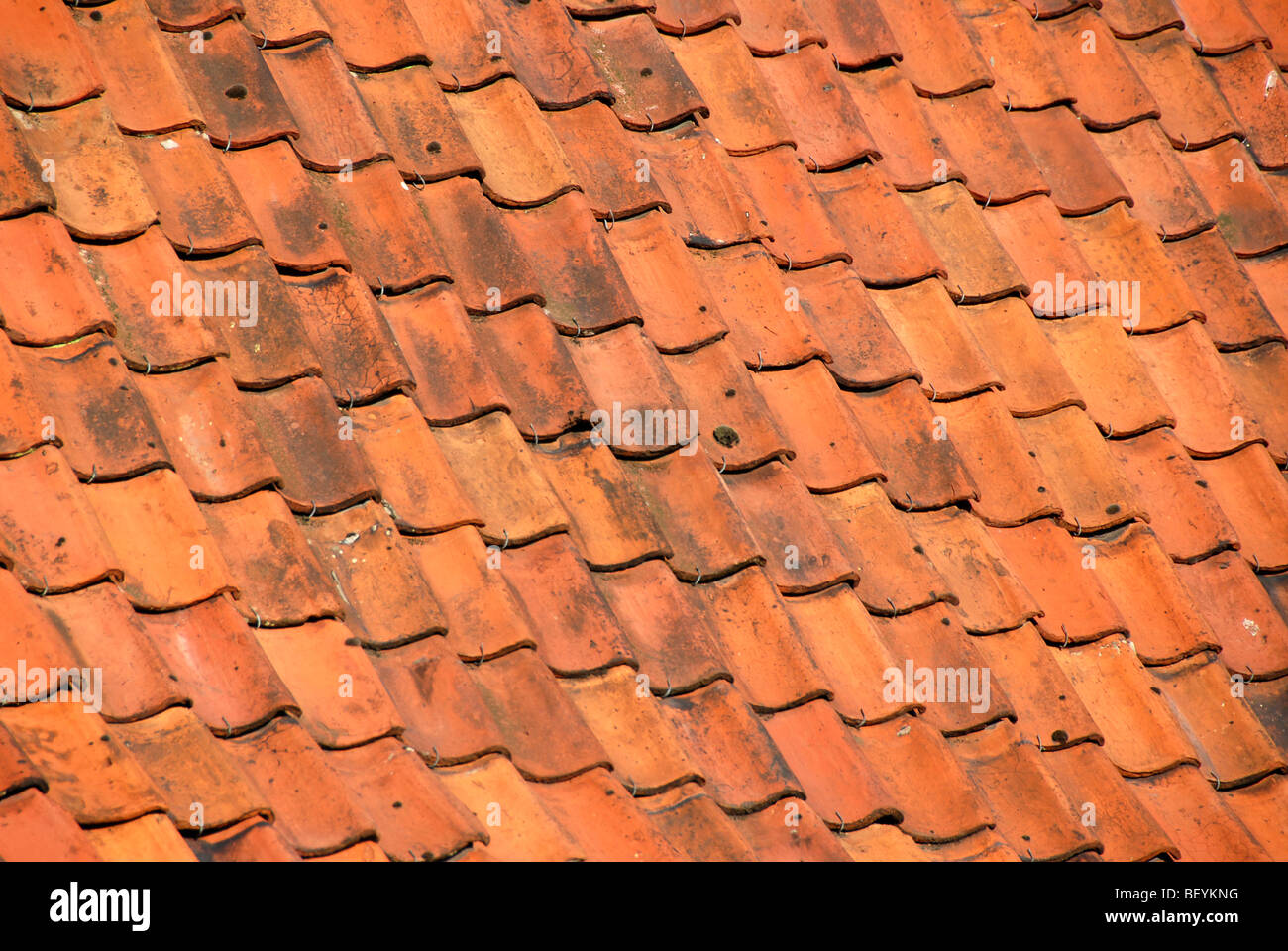 Stock Photo   Red Clay Roof Tiles Bruges Brugge Belgium
