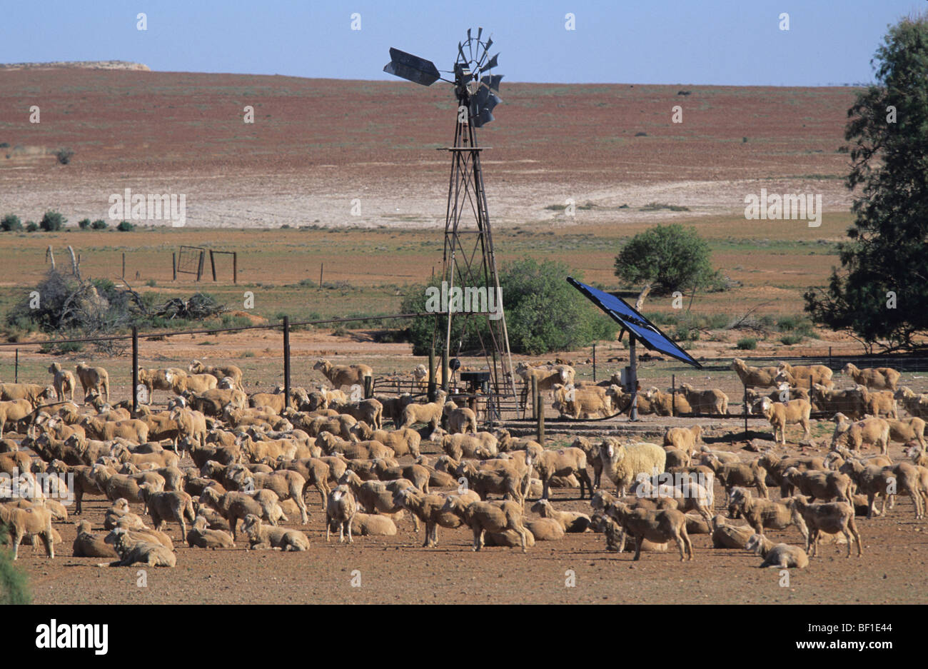 australian outback  sheep ranch  solar and wind power and water stock photo  royalty free image