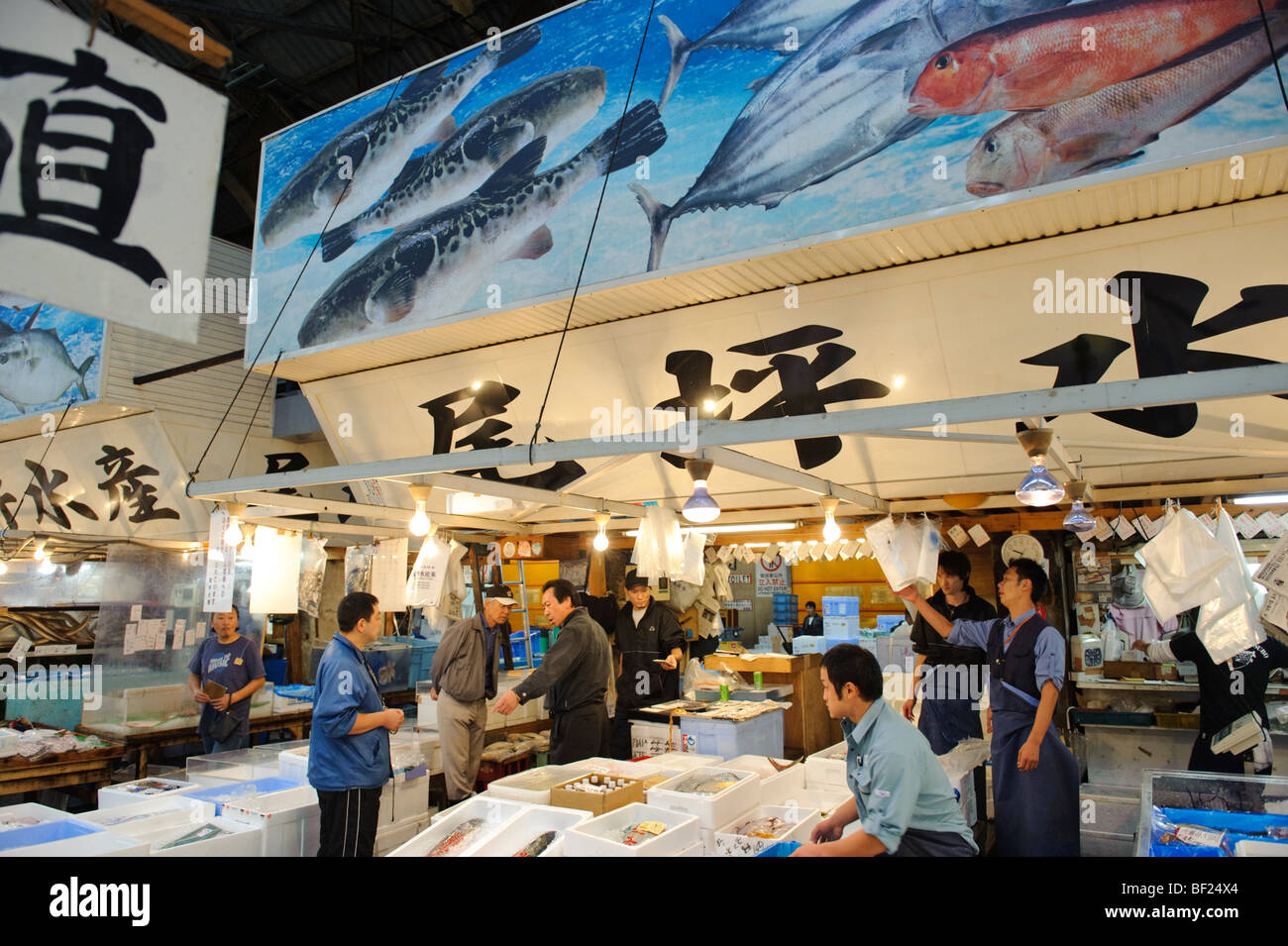 Otsubo suisan fish wholesalers and fugu specialists for Suisan fish market
